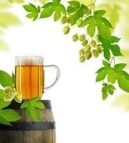 啤酒代理加盟商如何提高自己?